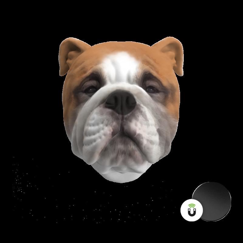 esempio-calamita-personalizzata-testa-cane